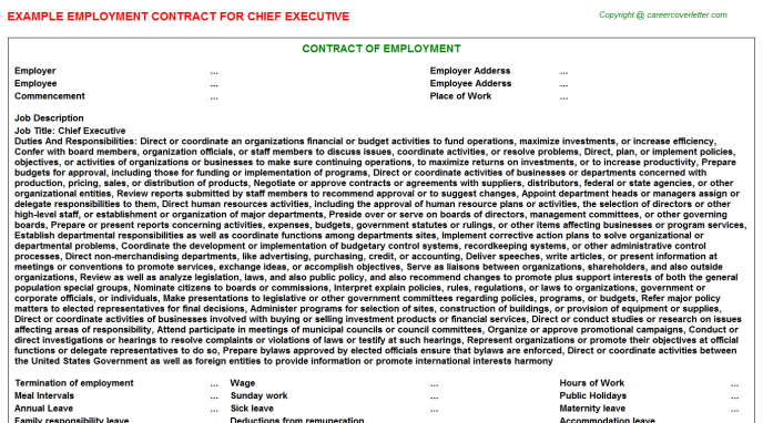 Chief Executive Employment Contract Template