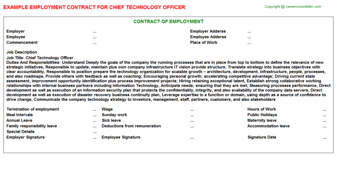 Chief Technology Officer Employment Contract Template