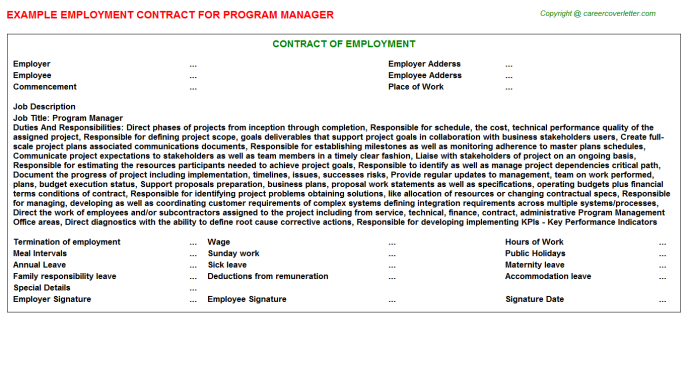 Program Manager Employment Contract Template