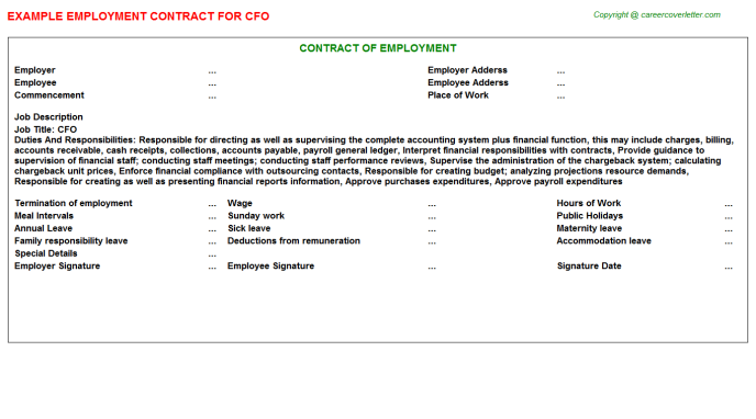CFO Employment Contract Template