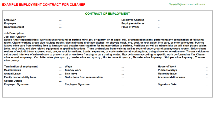 Cleaner job employment contract (#22090)