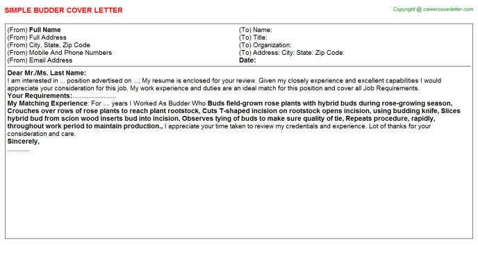 Budder Cover Letter Template