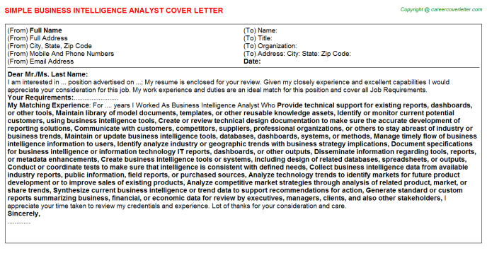 Business Intelligence Analyst Job Cover Letter