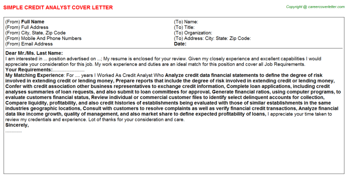 Credit Analyst Cover Letter Template