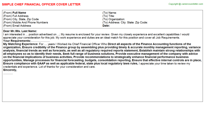 Chief Financial Officer Cover Letter Template