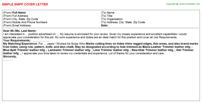 Snipp Cover Letter Template