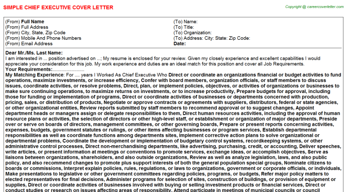 Chief Executive Cover Letter Template
