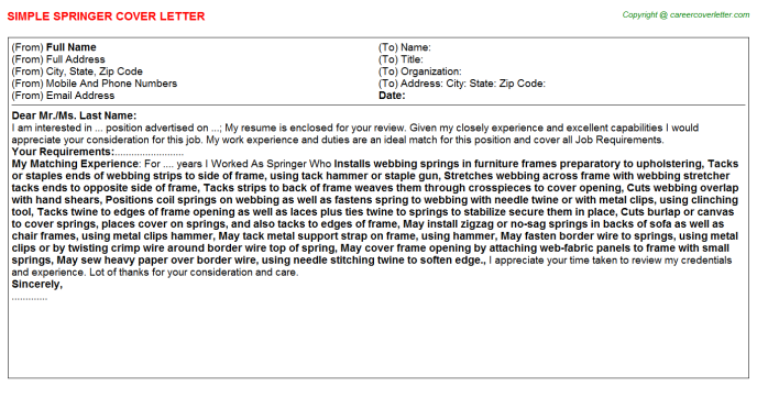 Springer Job Cover Letter Template