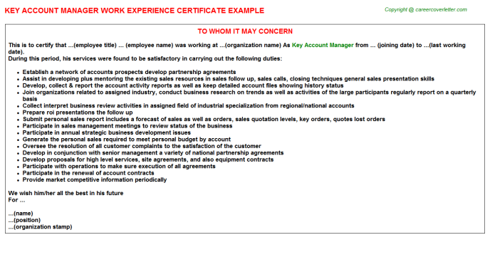 Key Account Manager Experience Letter Template