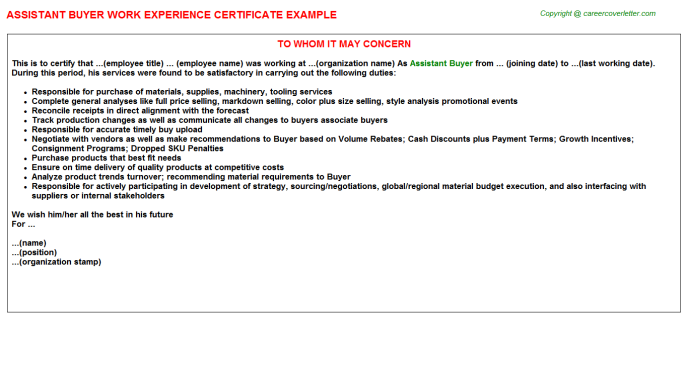Assistant Buyer Work Experience Letter Template
