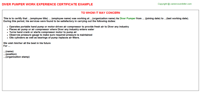 Diver Pumper Work Experience Letter Template