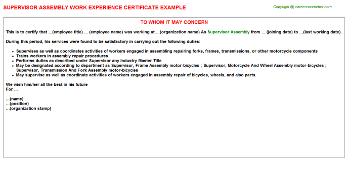 Supervisor Assembly Experience Letter Template