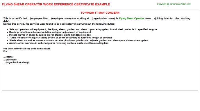 Flying shear Operator Experience Letter Template