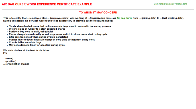 Air Bag Curer Experience Letter Template