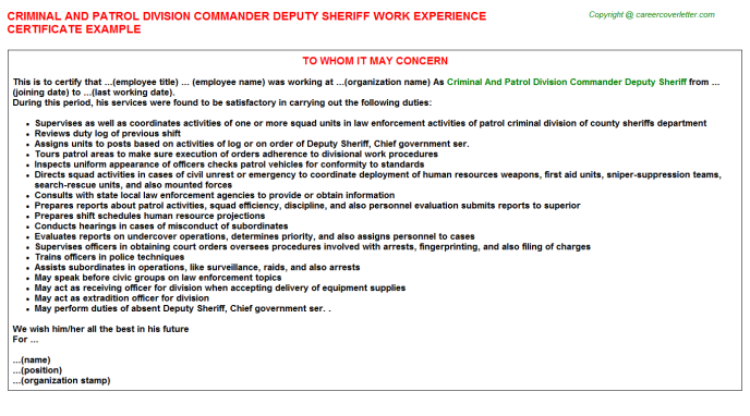 Criminal And Patrol Division Commander Deputy Sheriff Experience Letter Template
