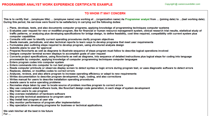 Programmer analyst Experience Letter Template