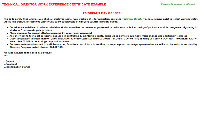 Technical director work experience letter (#22642)
