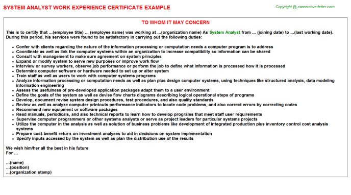 System analyst work experience letter (#23658)