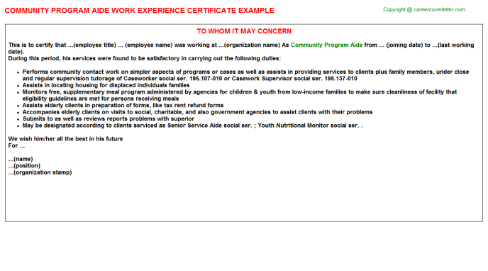 community program aide experience letter template