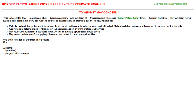 Border Patrol Agent Experience Letter Template