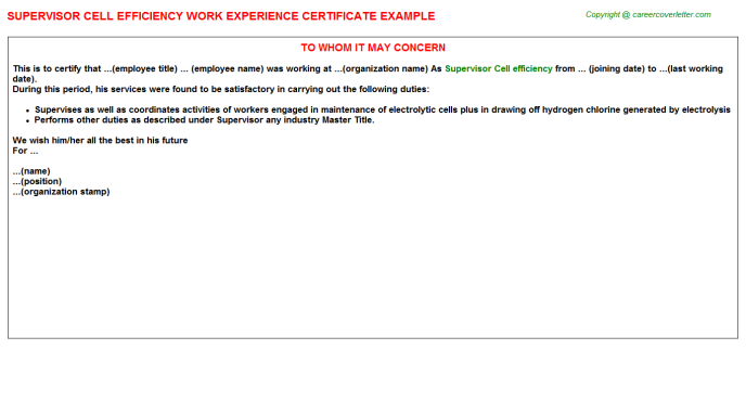 supervisor cell efficiency experience letter template