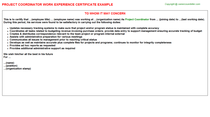 Project Coordinator Experience Letter Template