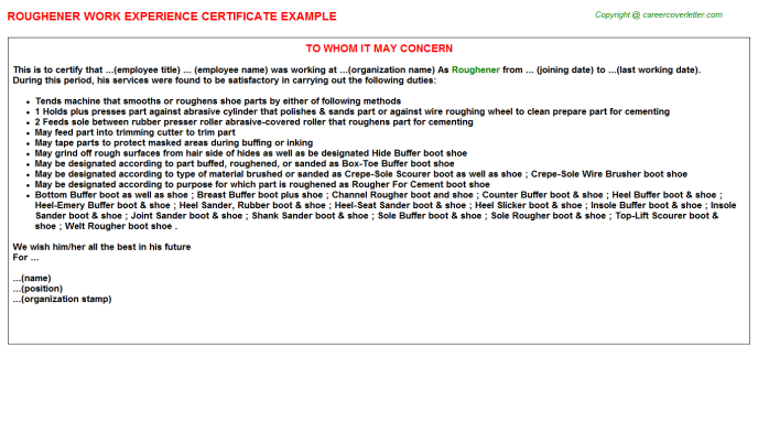 Roughener Experience Letter Template