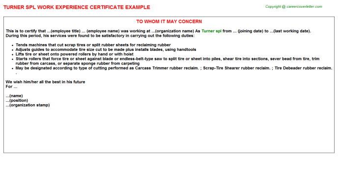 Turner spl Experience Letter Template