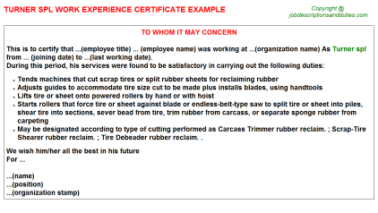 Turner spl Work Experience Letter Template