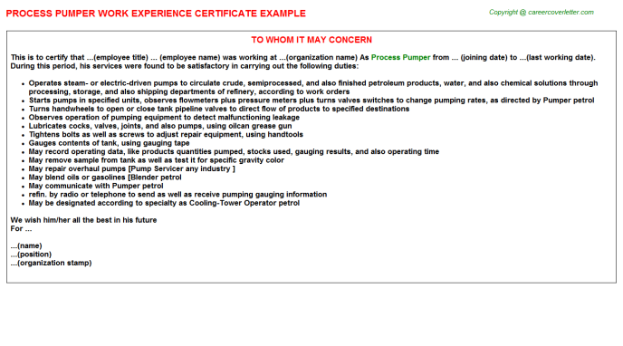 Process Pumper Work Experience Letter Template