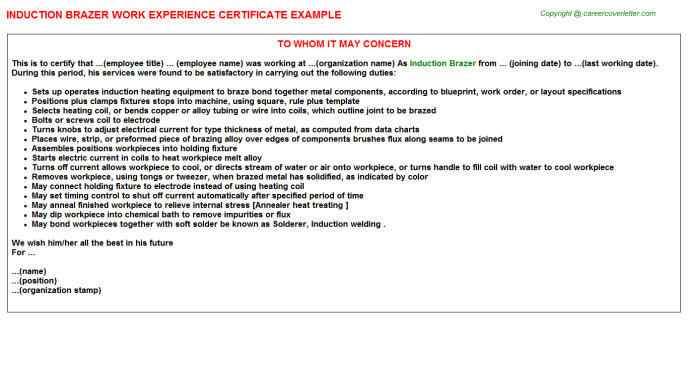 Induction Brazer Job Experience Letter Template