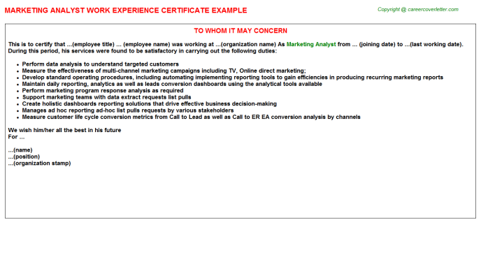 Marketing Analyst Work Experience Letter Template