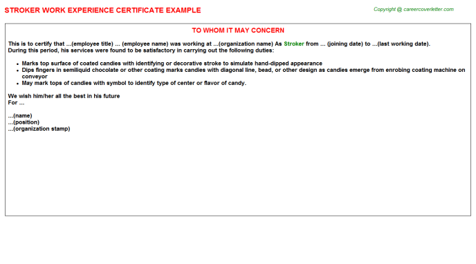 Stroker Experience Letter Template
