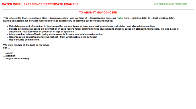 Rater Experience Letter Template