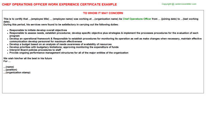 Chief Operations Officer Experience Letter Template