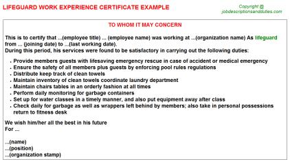 Lifeguard Work Experience Letter Template