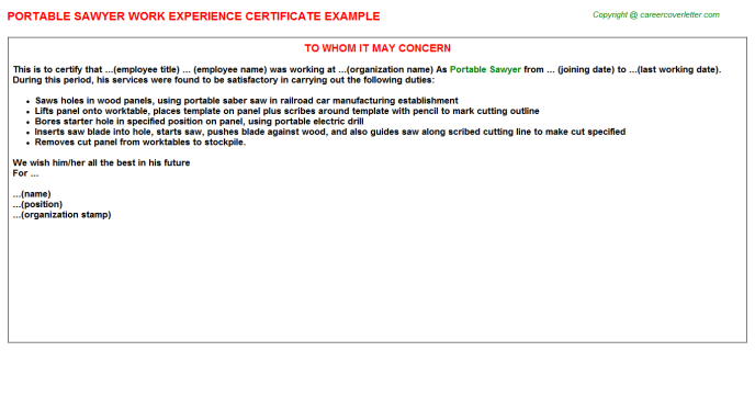 Ab Initio Developer Work Experience Letters | Experience Certificates