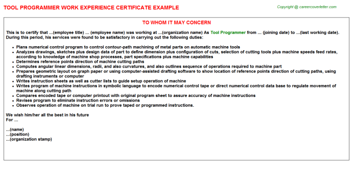 Tool Programmer Experience Certificate Template