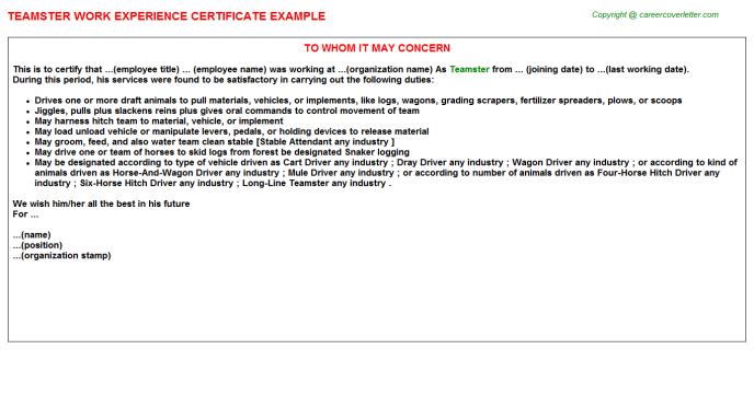 Teamster Experience Letter Template