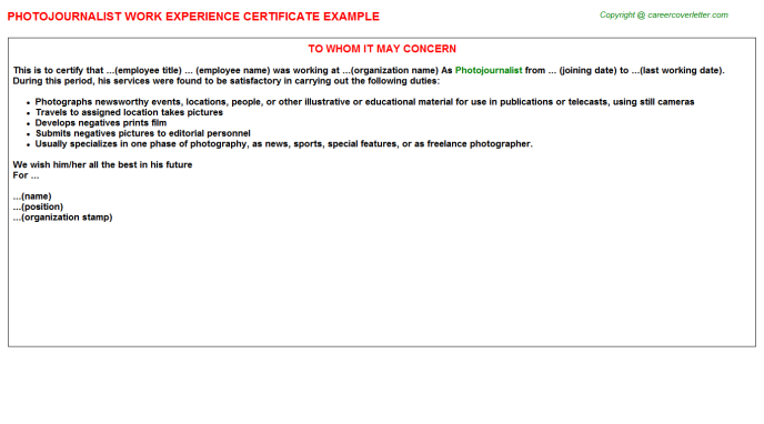 Photojournalist Experience Letter Template
