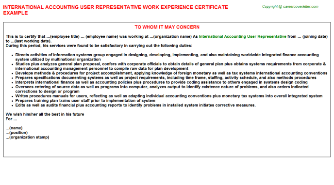 International Accounting User Representative Experience Letter Template