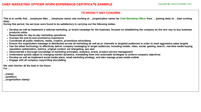 Chief Marketing Officer Experience Letter Template