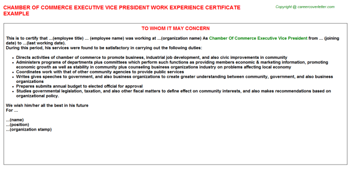 Chamber Of Commerce Executive Vice President Work Experience Letter