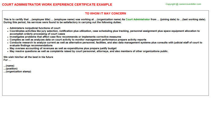 Court Administrator Work Experience Letter Template