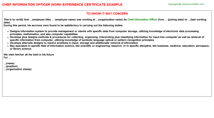 Chief Information Officer Experience Letter Template