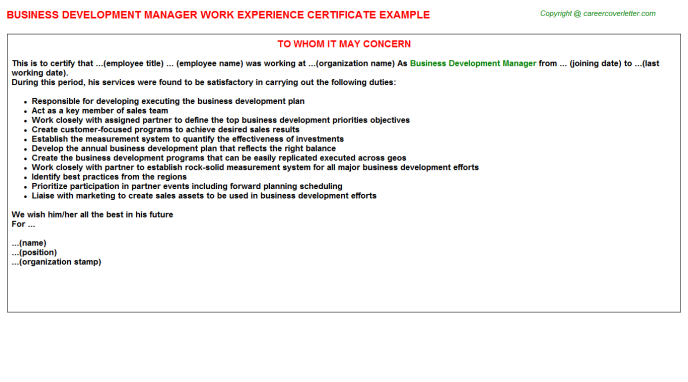 Business Development Manager Experience Letter Template