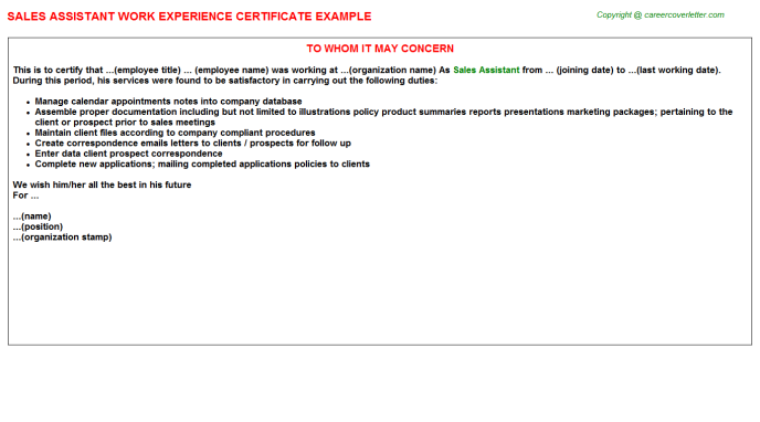Sales Assistant Experience Letter Template