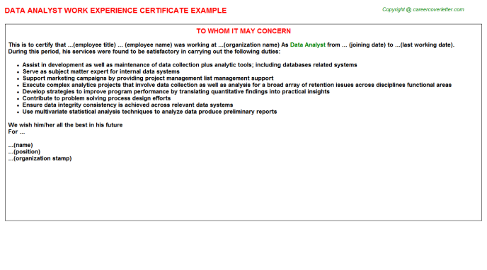 Data Analyst Experience Letter Template
