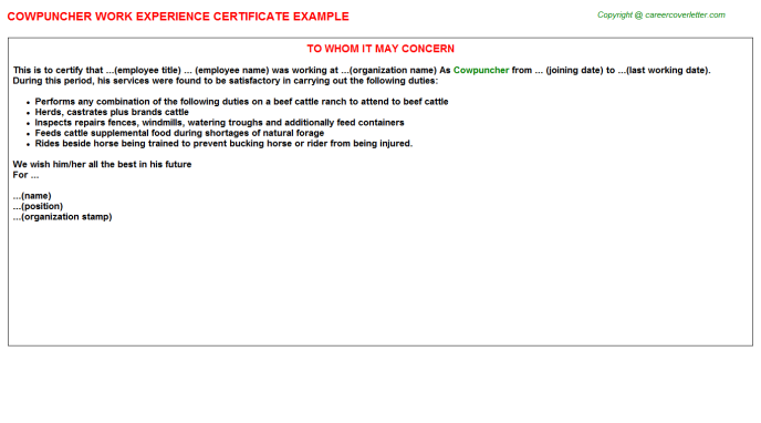 Cowpuncher Experience Letter Template