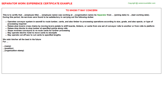 Separator Experience Letter Template
